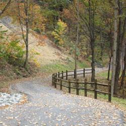 Roaring Run Trail Trans Allegheny Trails Apollo To